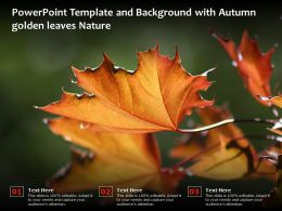 Powerpoint Template And Background With Autumn Golden Leaves Nature