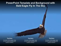 Powerpoint Template And Background With Bald Eagle Fly In The Sky