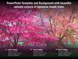 Powerpoint Template And Background With Beautiful Autumn Colours Of Japanese Maple Trees