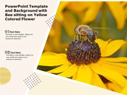 Powerpoint Template And Background With Bee Sitting On Yellow Colored Flower