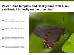 Powerpoint Template And Background With Black Swallowtail Butterfly On The Green Leaf