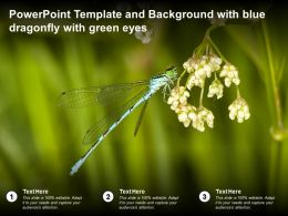 Powerpoint Template And Background With Blue Dragonfly With Green Eyes