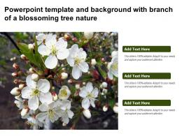 Powerpoint Template And Background With Branch Of A Blossoming Tree Nature