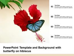 Powerpoint Template And Background With Butterfly On Hibiscus