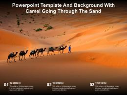 Powerpoint Template And Background With Camel Going Through The Sand