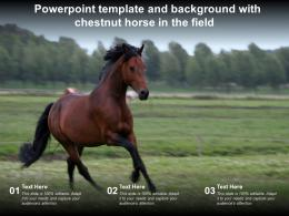 Powerpoint Template And Background With Chestnut Horse In The Field