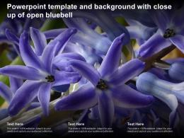 Powerpoint Template And Background With Close Up Of Open Bluebell