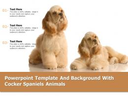 Powerpoint Template And Background With Cocker Spaniels Animals