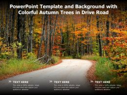 Powerpoint Template And Background With Colorful Autumn Trees In Drive Road