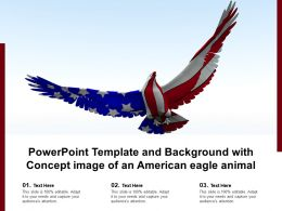 Powerpoint Template And Background With Concept Image Of An American Eagle Animal