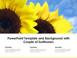 Powerpoint Template And Background With Couple Of Sunflowers