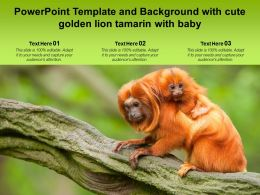 Powerpoint Template And Background With Cute Golden Lion Tamarin With Baby