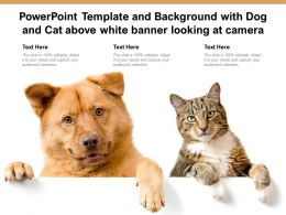 Powerpoint Template And Background With Dog And Cat Above White Banner Looking At Camera