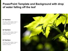 Powerpoint Template And Background With Drop Of Water Falling Off The Leaf