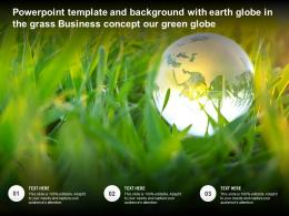 Powerpoint Template And Background With Earth Globe In The Grass Business Concept Our Green Globe