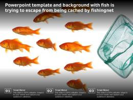 Powerpoint Template And Background With Fish Is Trying To Escape From Being Cached By Fishingnet