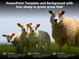 Powerpoint Template And Background With Four Sheep In Green Grass Field