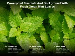 Powerpoint Template And Background With Fresh Green Mint Leaves