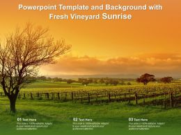 Powerpoint Template And Background With Fresh Vineyard Sunrise