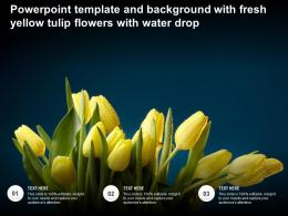 Powerpoint Template And Background With Fresh Yellow Tulip Flowers With Water Drop