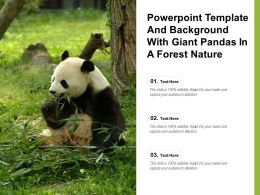 Powerpoint Template And Background With Giant Pandas In A Forest Nature