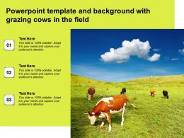 Powerpoint Template And Background With Grazing Cows In The Field