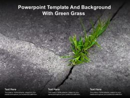 Powerpoint Template And Background With Green Grass