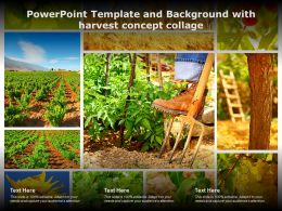 Powerpoint Template And Background With Harvest Concept Collage