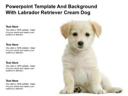 Powerpoint Template And Background With Labrador Retriever Cream Dog