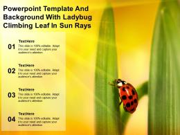 Powerpoint Template And Background With Ladybug Climbing Leaf In Sun Rays