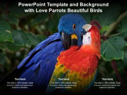 Powerpoint Template And Background With Love Parrots Beautiful Birds