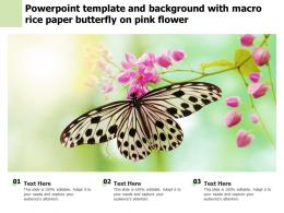 Powerpoint Template And Background With Macro Rice Paper Butterfly On Pink Flower