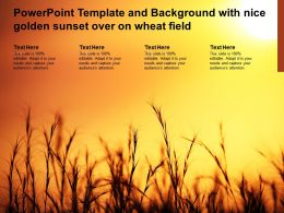 Powerpoint Template And Background With Nice Golden Sunset Over On Wheat Field