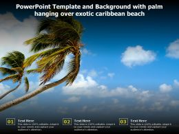 Powerpoint Template And Background With Palm Hanging Over Exotic Caribbean Beach