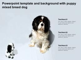 Powerpoint Template And Background With Puppy Mixed Breed Dog
