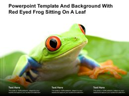 Powerpoint Template And Background With Red Eyed Frog Sitting On A Leaf
