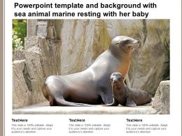 Powerpoint Template And Background With Sea Animal Marine Resting With Her Baby