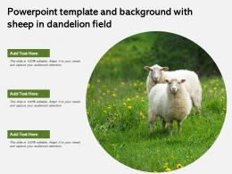 Powerpoint Template And Background With Sheep In Dandelion Field