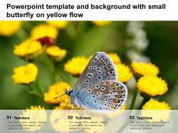 Powerpoint Template And Background With Small Butterfly On Yellow Flow