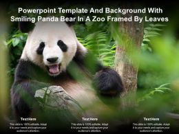 Powerpoint Template And Background With Smiling Panda Bear In A Zoo Framed By Leaves