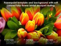 Powerpoint Template And Background With Soft Colored Tulip Flower Bridal Bouquet Resting