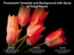 Powerpoint Template And Background With Spray Of Tulips Nature
