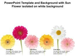 Powerpoint Template And Background With Sun Flower Isolated On White Background