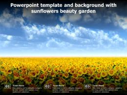Powerpoint Template And Background With Sunflowers Beauty Garden