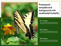 Powerpoint Template And Background With Swallowtail Butterfly