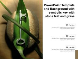 Powerpoint Template And Background With Symbolic Key With Stone Leaf And Grass