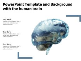 Powerpoint Template And Background With The Human Brain