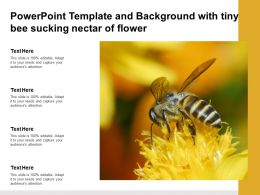 Powerpoint Template And Background With Tiny Bee Sucking Nectar Of Flower