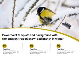 Powerpoint Template And Background With Titmouse On Tree On Snow Clad Branch In Winter