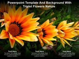Powerpoint Template And Background With Triplet Flowers Nature